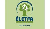 ÉLETFA ELIT KLUB ÉS HÁLÓZATÉPÍTŐK KLUBJA